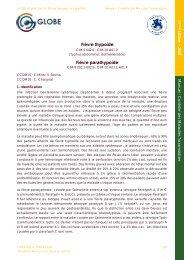 Fièvre thypoïde Fièvre parathypoïde - GLOBE Network