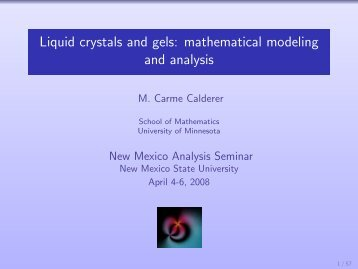 Liquid crystals and gels: mathematical modeling and analysis