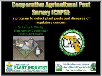 Insects_CAPS_TWhilby_DPI-DACS - Florida Invasive Species ...