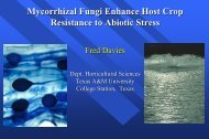 AMF Enhancement of Plant Water Relations - Aggie Horticulture ...