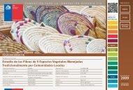 Estudio de las Fibras de 5 Especies Vegetales Manejadas ... - Fia