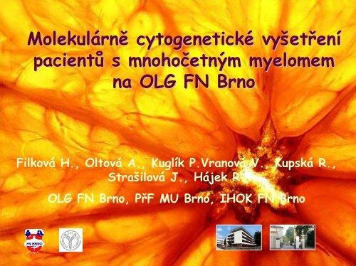 Cytogenetická vyšetření u mnohočetného myelomu - CMG