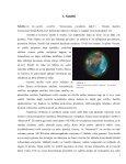 """Zinātniski pētnieciskais darbs """"Latvijas pieteikums satelītu ... - VATP - Page 6"""