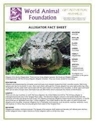 ALLIGATOR FACT SHEET - World Animal Foundation