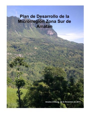 Plan de Desarrollo de la Microrregión Zona Sur de Amatan – 2011