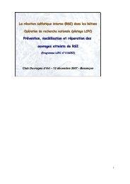 Prévention, modélisation et réparation des ouvrages atteints de RSI