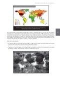 Capítulo 4 - Biblioteca Virtual en Prevención y Atención de Desastres - Page 5