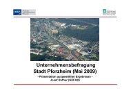 Unternehmensbefragung Stadt Pforzheim (Mai 2009)