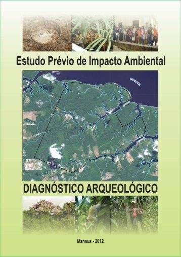 Diagnóstico Arqueológico - Cap. 8 - IPAAM