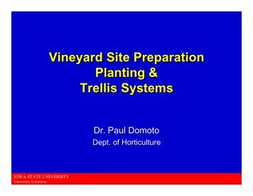 Vineyard Site Preparation & Trellis Systems