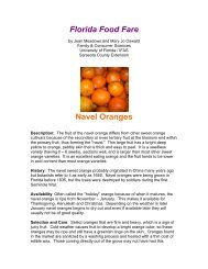Florida Food Fare Navel Oranges - Sarasota County Extension ...
