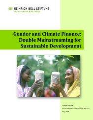 Gender and Climate Finance - Heinrich Böll Foundation
