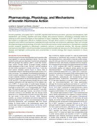 Pharmacology, Physiology, and Mechanisms of ... - Glucagon.com