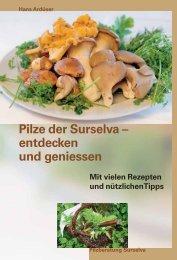 Pilze der Surselva – entdecken und geniessen - Kreis Ilanz