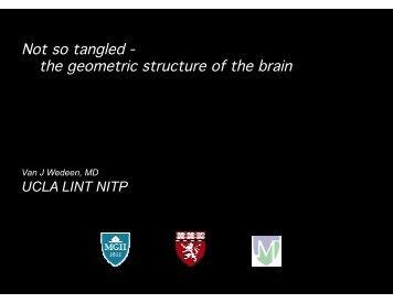 slides - Brainmapping.ORG