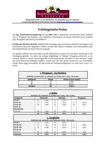 Druck-PDF des Marktberichtes