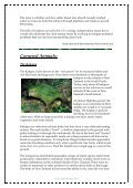 The Weekly Planet - Richmond - The American International ... - Page 3