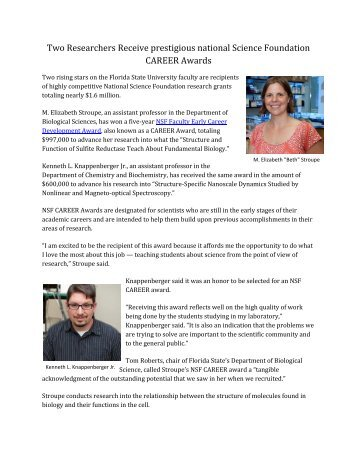 Two Researchers Receive prestigious national Science Foundation ...
