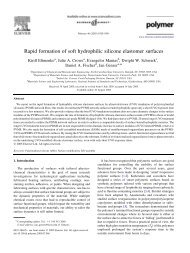 Rapid formation of soft hydrophilic silicone elastomer surfaces