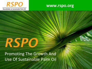 RSPO - American Palm Oil Council