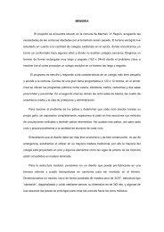 Memoria Primer Lugar V Concurso CTT-Corma 2010 - Plataforma ...