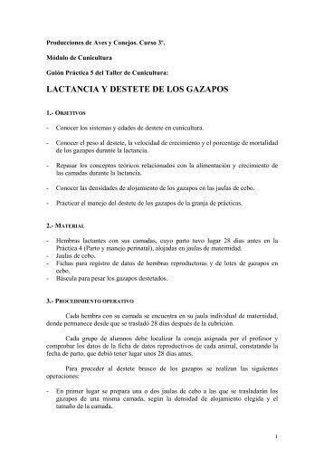 LACTANCIA Y DESTETE DE LOS GAZAPOS - Grupo.us.es ...