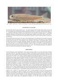 salmo salar l., 1758 - Electronic Journal of Polish Agricultural ... - Page 7