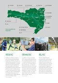 RELATÓRIO ANUAL - Fiesc - Page 7