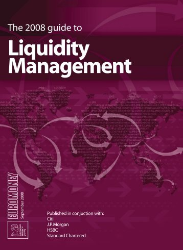 Download PDF: The 2008 Guide to Liquidity ... - Euromoney
