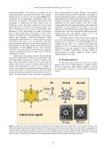 Recombinant adenoviruses and adenovirus penton vectors: from ... - Page 3