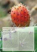magazin - globalista - Page 7