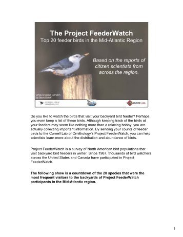 The Project FeederWatch - Cornell Lab of Ornithology