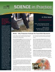 January 2009 Issue - Select Sires