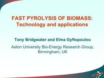 FAST PYROLYSIS OF BIOMASS - DGS