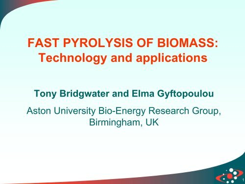 FAST PYROLYSIS OF BIOMASS - DGS