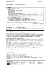 UTDYPENDE SAKSFREMSTILLING KAPITTEL 1: PLANFORSLAGET