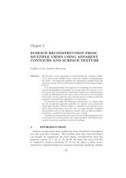 Chapter 2 SURFACE RECONSTRUCTION FROM MULTIPLE ...