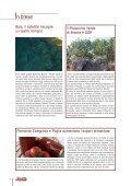 Editoriale - Camera di Commercio Italiana per la Svizzera - Page 4