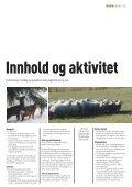 SENTERET - Regionrådet for Hallingdal - Page 5