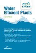 native water efficient plants - Water For Tomorrow - Page 3