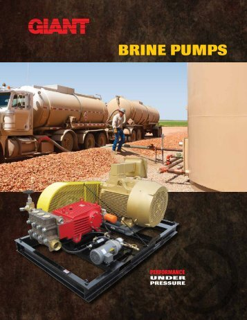 BRINE PUMPS PERfORMANCE - Giant Industries