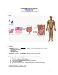 Overview of Anatomy and Physiology - Sinoe medical homepage.