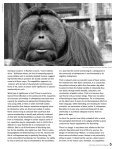 Download the PDF - Arcus Foundation - Page 6