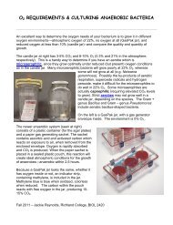 Oxygen Requirements and Culturing Anaerobic Bacteria