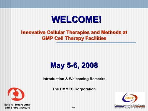 Pittsburgh Workshop 2008 - The EMMES Corporation