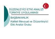 DÜZENLEYİCİ ETKİ ANALİZİ TÜRKİYE ... - REC Türkiye