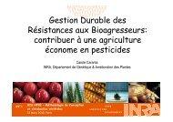 Gestion durable des résistances - Inra