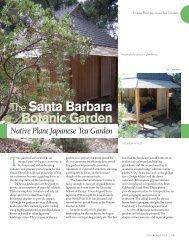 The Santa Barbara Botanic Garden Native Plant Japanese Tea ...