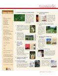 Primavera - Verano • 2004 - Consulta de Obligaciones Pendientes ... - Page 3
