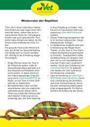 Winterruhe der Reptilien - cdVet Naturprodukte GmbH